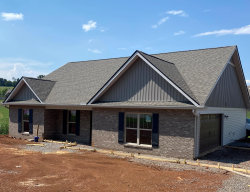 Photo of 2838 Big Springs Rd, Friendsville, TN 37737 (MLS # 1124813)