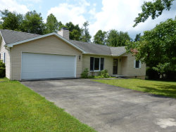 Photo of 344 Upper Meadows Rd, Pleasant Hill, TN 38578 (MLS # 989619)