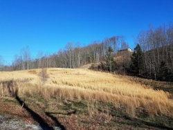 Photo of 2942 W Short Mountain, Sneedville, TN 37869 (MLS # 996080)