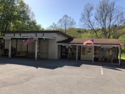 Photo of 1440&1444 Wears Valley Rd, Pigeon Forge, TN 37863 (MLS # 1041657)