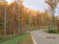 Photo of Lot 1 Eagle Ridge Rd, Lot # 1, Rockwood, TN 37854 (MLS # 1002362)