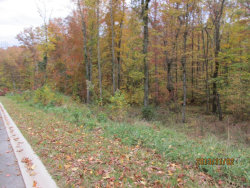 Photo of Lot 13 Eagle Ridge Rd, Lot # 13, Rockwood, TN 37854 (MLS # 1002364)
