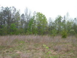 Photo of Carl Griffith Rd, Lot # 3, Robbins, TN 37852 (MLS # 1017243)