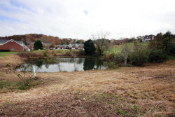 Photo of 2308 Pauly Brook Way, Knoxville, TN 37932 (MLS # 1023273)