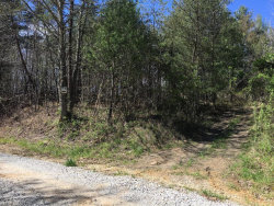 Photo of Wolf Creek Rd, Robbins, TN 37852 (MLS # 1028184)
