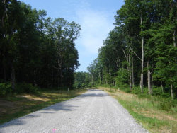 Photo of Upper Eagles Nest Rd, Crab Orchard, TN 37723 (MLS # 1032554)