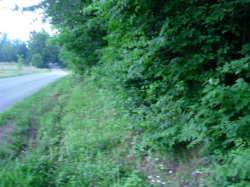 Photo of 1399a Dry Fork Valley Rd, Lot # 7, Ten Mile, TN 37880 (MLS # 1032820)