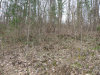 Photo of Lot 80 Muscadine, Sevierville, TN 37876 (MLS # 1036080)