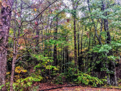 Photo of Multiple Parcels Glades Rd, Gatlinburg, TN 37738 (MLS # 1040858)