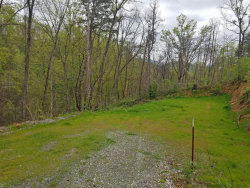 Photo of 424 Troy Drive, Lot # 8, Pigeon Forge, TN 37863 (MLS # 1041116)