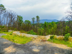 Photo of 974 Chestnut Drive, Lot # 374, Gatlinburg, TN 37738 (MLS # 1041291)