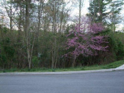 Photo of Hickory Tr, Lot # 9, Norris, TN 37828 (MLS # 1043990)