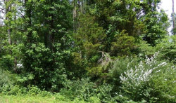 Photo of Hen Valley Rd, Lot # 0, Oliver Springs, TN 37840 (MLS # 1044157)
