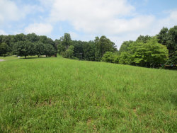 Photo of 000 River Rd, Ten Mile, TN 37880 (MLS # 1049501)