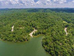 Photo of 1971 Indian Shadows Drive, Lot # 100, Ten Mile, TN 37880 (MLS # 1049563)