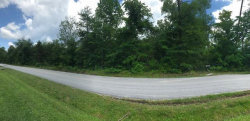 Photo of Chestnut Hill Rd, Crab Orchard, TN 37723 (MLS # 1049600)