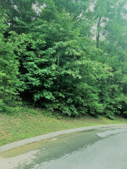 Photo of Golden Eagle Way, Pigeon Forge, TN 37863 (MLS # 1050303)