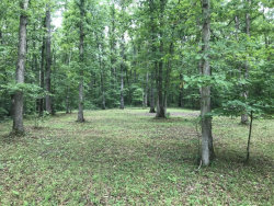 Photo of Lakebrook Drive, Lot # 14, Vonore, TN 37885 (MLS # 1050424)