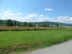 Photo of 538 Emory River Rd, Lot 11, Lot # 11, Harriman, TN 37748 (MLS # 1050655)
