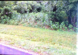 Photo of Dudi Tr, Lot # 6, Vonore, TN 37885 (MLS # 1051160)