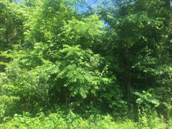 Photo of Dudi Tr, Lot # 1, Vonore, TN 37885 (MLS # 1051458)