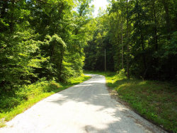 Photo of Little Egypt Rd, Ten Mile, TN 37880 (MLS # 1051548)