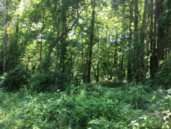 Photo of 8 Laurel Place, Lot # 12, Norris, TN 37828 (MLS # 1051849)
