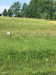 Photo of Lot 25 Oma Lee Drive, Lot # 25, Sevierville, TN 37876 (MLS # 1052116)