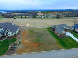 Photo of 146 Osprey Circle, Lot # 43, Vonore, TN 37885 (MLS # 1052635)
