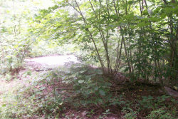 Photo of Ridgeview Circle, Lot # 15, Caryville, TN 37714 (MLS # 1053146)
