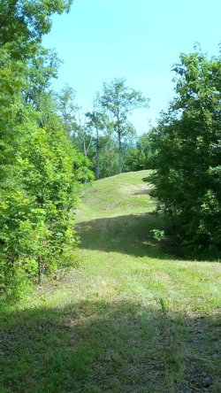 Photo of 221 Ponders Gap Rd, Lot # 4, Ten Mile, TN 37880 (MLS # 1055478)