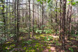 Photo of Lot 21 & 22 Stonegate Way, Townsend, TN 37882 (MLS # 1056310)