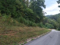 Photo of Shady Cove/ Emerald Glen, Caryville, TN 37714 (MLS # 1057434)