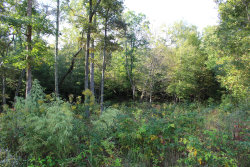 Photo of Mountain Preserve Court Lot 14, Lot # 14, Crab Orchard, TN 37723 (MLS # 1058006)