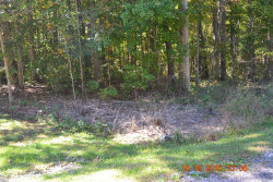 Photo of 3007 Nocatee, Lot # 186, Crossville, TN 38572 (MLS # 1059681)