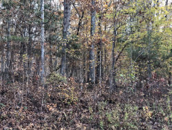 Photo of Hiwassee View Dr Lot #120, Lot # 120, Jacksboro, TN 37757 (MLS # 1062801)