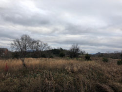 Photo of Murrell Meadows Drive, Lot # 33, Sevierville, TN 37876 (MLS # 1063732)