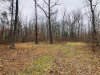 Photo of 88 Cleggan Drive, Lot # 425, Crossville, TN 38572 (MLS # 1065297)