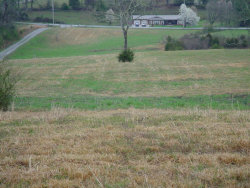 Photo of Towe String Rd, Jacksboro, TN 37757 (MLS # 1066049)
