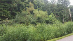 Photo of Lone Mountain Rd, Andersonville, TN 37705 (MLS # 1066065)
