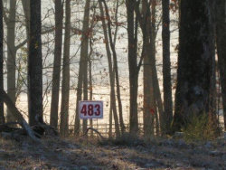 Photo of W Shore Dr. Drive, Lot # 483 & 484, Rockwood, TN 37854 (MLS # 1066069)