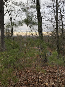 Photo of Lot 9-A Monte Wood Circle, Lot # 9-A, Pigeon Forge, TN 37863 (MLS # 1066946)