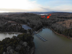 Photo of E Shore Drive, Lot # 156, Rockwood, TN 37854 (MLS # 1067408)