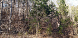 Photo of Pheasant Court, Lot # 5, Sevierville, TN 37876 (MLS # 1069862)