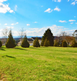 Photo of Trillium Drive, Lot # 37, Andersonville, TN 37705 (MLS # 1071636)