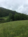 Photo of 0 Beagle Lane, Lot # 13, Clinton, TN 37716 (MLS # 1080041)