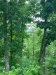 Photo of Lot 45 Cloud View Drive, Lot # 45, Sevierville, TN 37862 (MLS # 1081369)