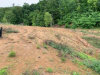 Photo of Carly Ridge Way, Lot # 124, Clinton, TN 37716 (MLS # 1083822)