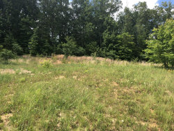 Photo of 4415 Platinum Drive, Lot # 19, Knoxville, TN 37938 (MLS # 1092015)