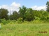 Photo of 2360 Misty Mountain Circle, Lot # 7, Knoxville, TN 37932 (MLS # 1101535)